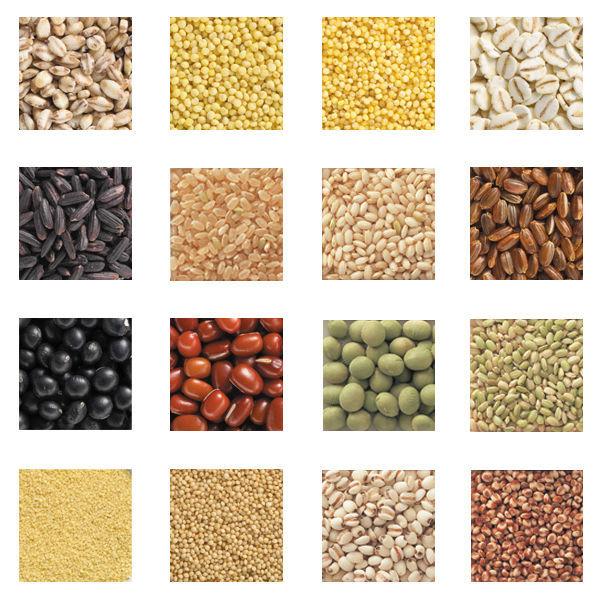 16 Getreide Japans für Reis